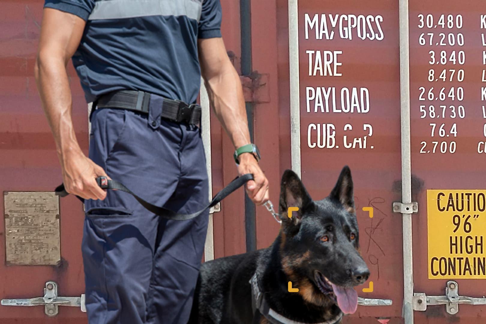 Unidad Canina Seguridad